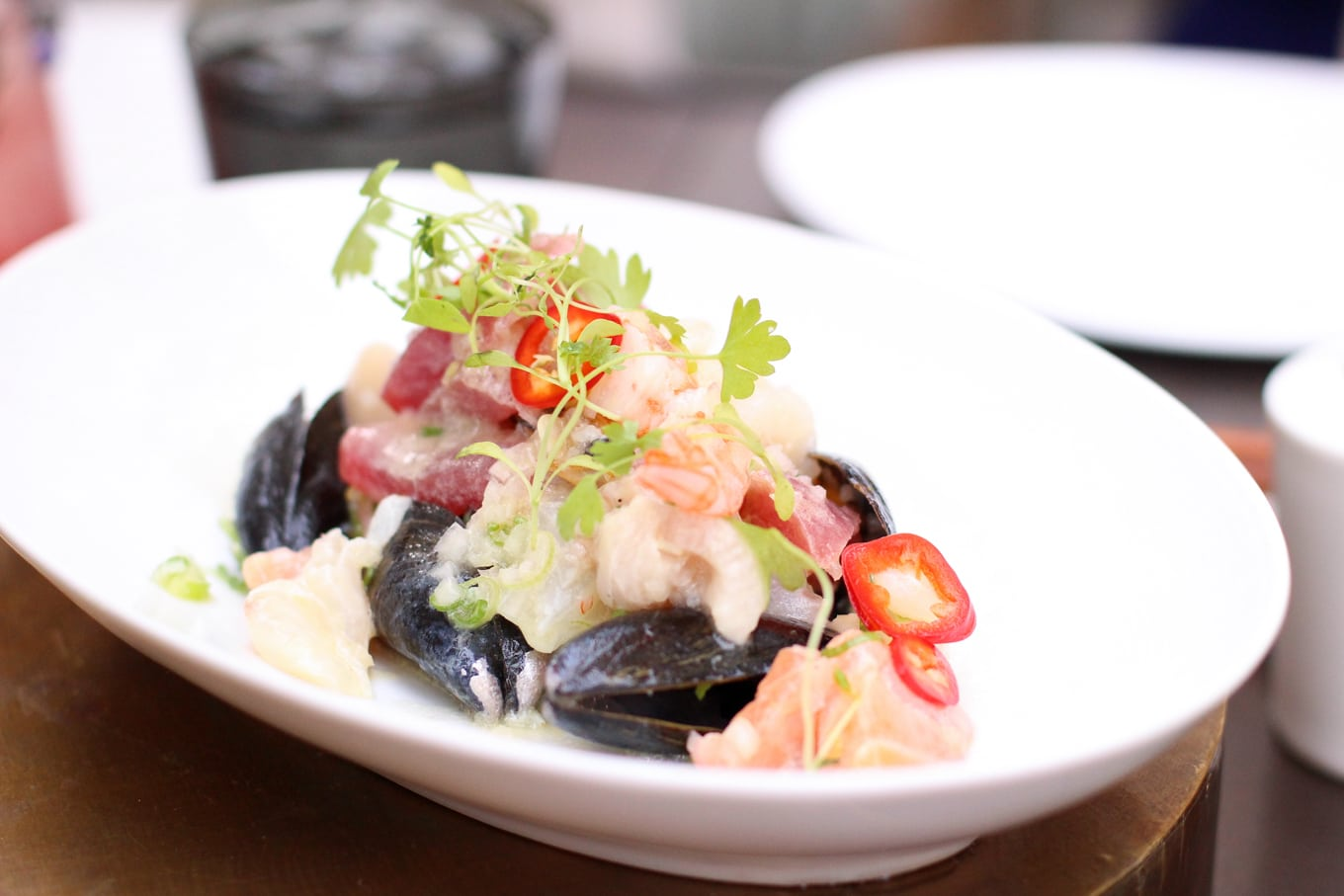 Once we sat down, they kicked off the meal with a beautiful ceviche and salmon tataki.