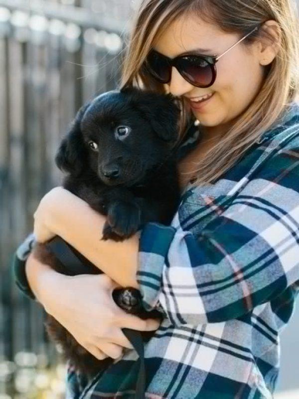 PAWS-Chicago-Pet-Adoption-12