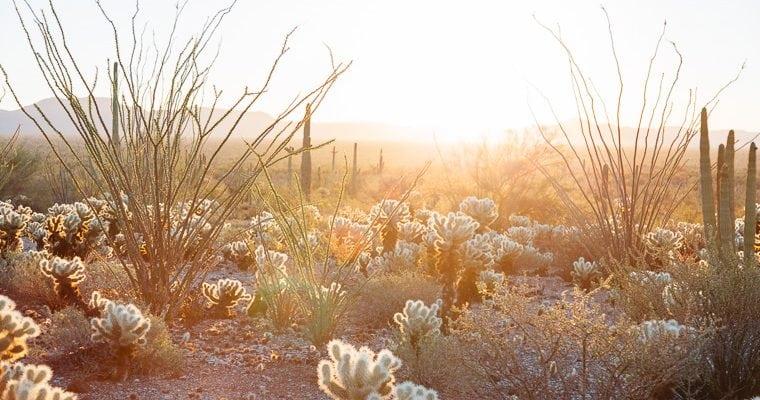 Affirm Arizona