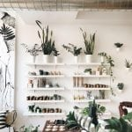 The Best Chicago Shops