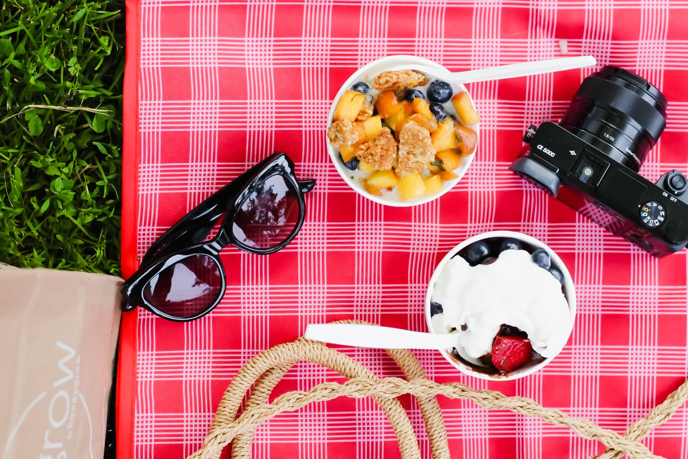 An Easy Summer Picnic Hack with Caviar Delivery - Lake Shore