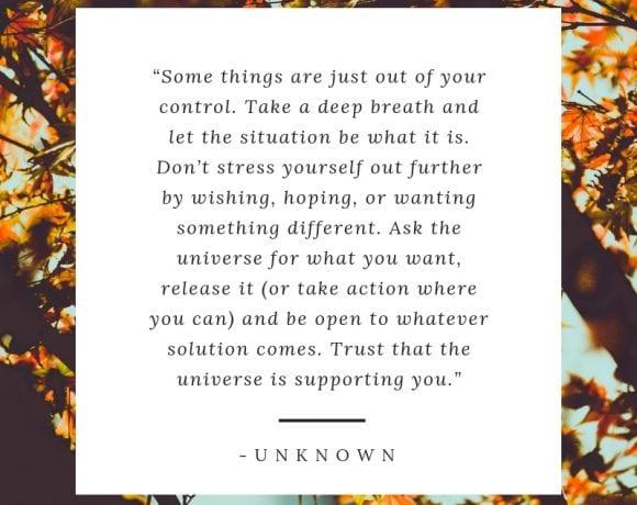 Mindful Monday V3