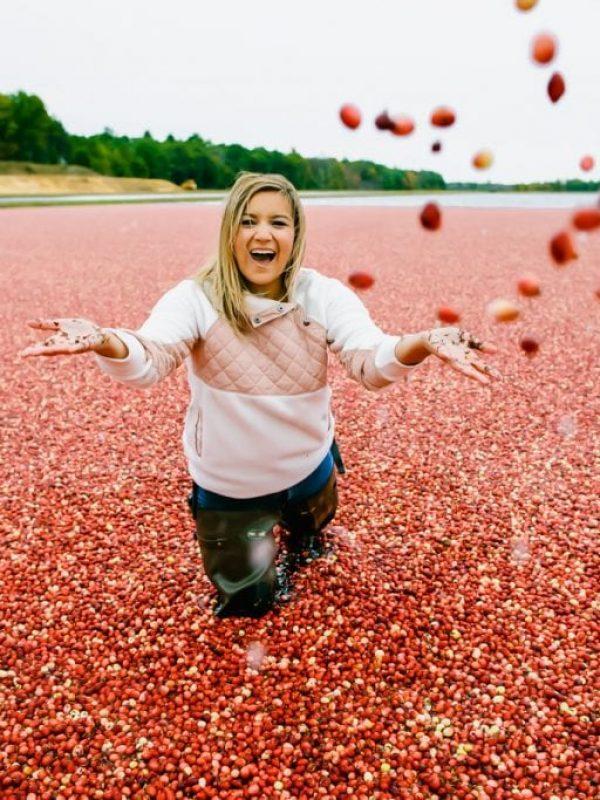 wisconsin-cranberry-bog-2