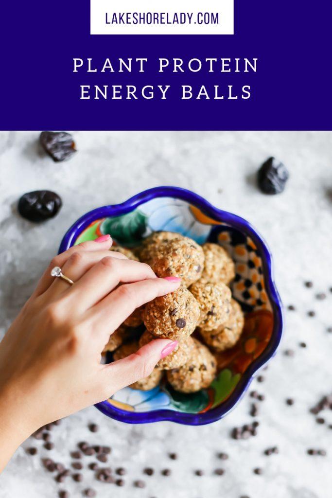 Plant Protein Energy Balls Recipe