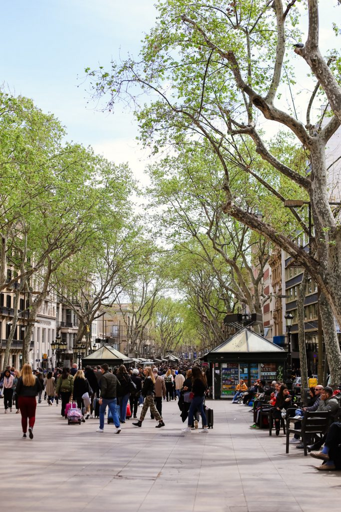 What to Do in Barcelona: Walk La Rambla