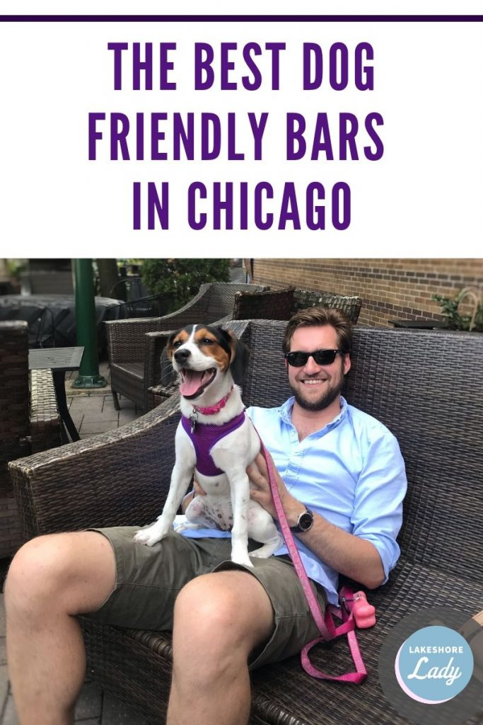 The Best Dog Friendly Bars in Chicago