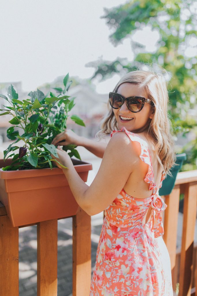 How To Have A Garden In The City - Lauren is all smiles from her burpee plants