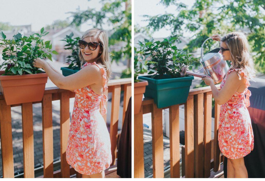 Lauren tends to her burpee plants