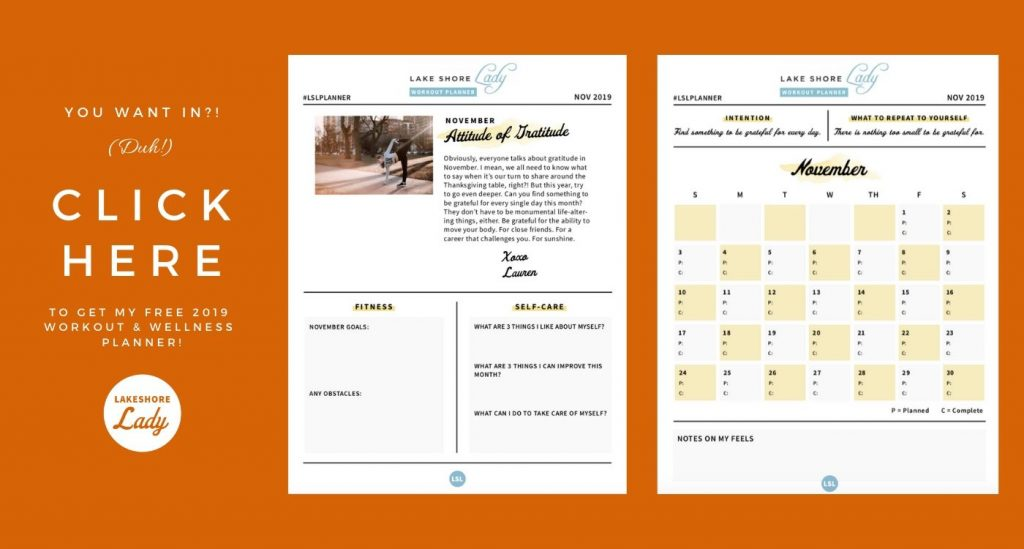 2019 wellness & workout planner by lake shore lady