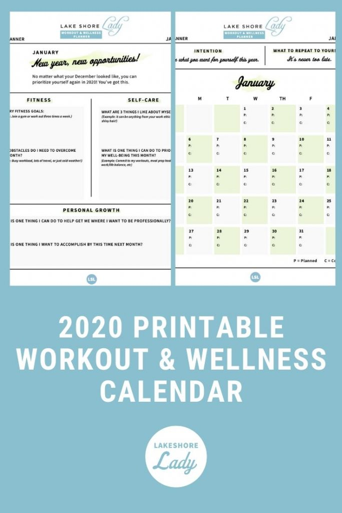 2020 Health And Wellness Plan | Lake Shore Lady