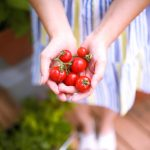 Our Porch Garden: The Best Container Friendly Vegetables from Burpee Plants
