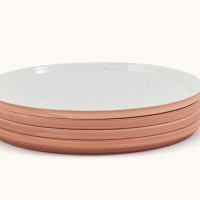 Main Plates